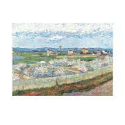 La Crau With Peach Trees In Blossom 50x70 cm