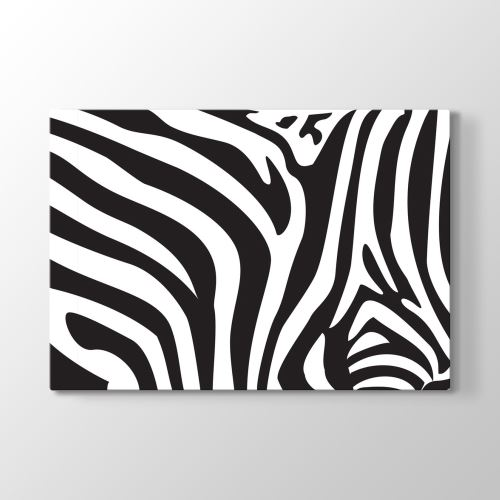 Tabloshop Zebra Deseni Vektörel Tablo 45x30 cm