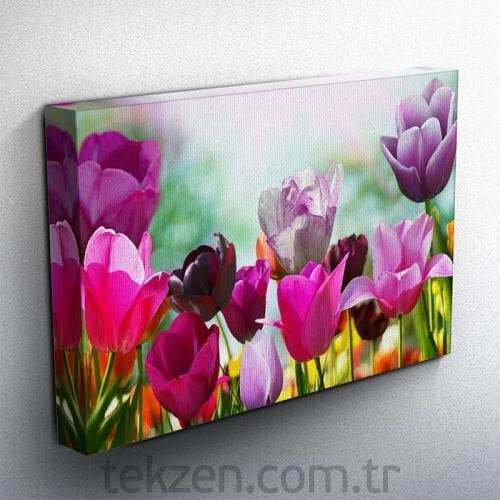Tabloshop - Colorful Tulips Kanvas Tablo 75x50cm